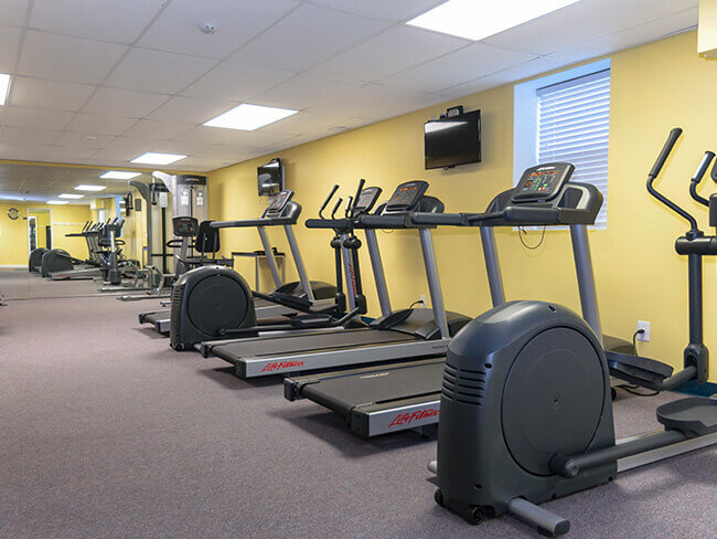 Gym with treadmills and elliptical machines